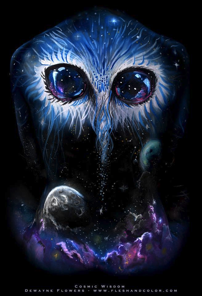 cosmic owl daubphoto - photo #14